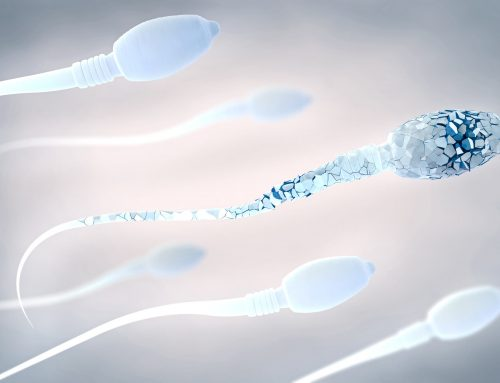 A study shows that alterations in some sperm proteins cause fertilization failures